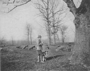 Druid Hill               Park 1906 Baltimore